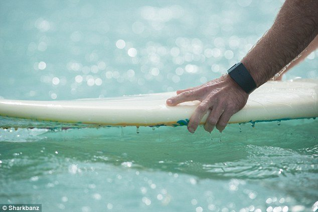 Surf deske – osnove